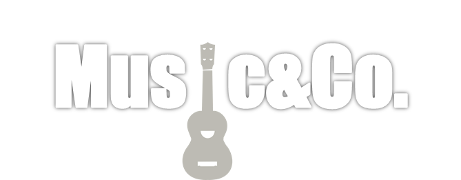 Gitarrenunterricht Zuerich |  lernen E-Gitarre zu spielen